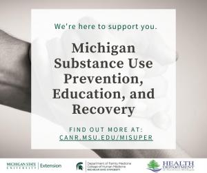 NMICH Opioid Webinar